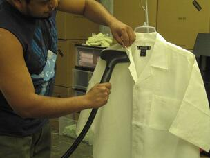Dolphino Steaming Shirt